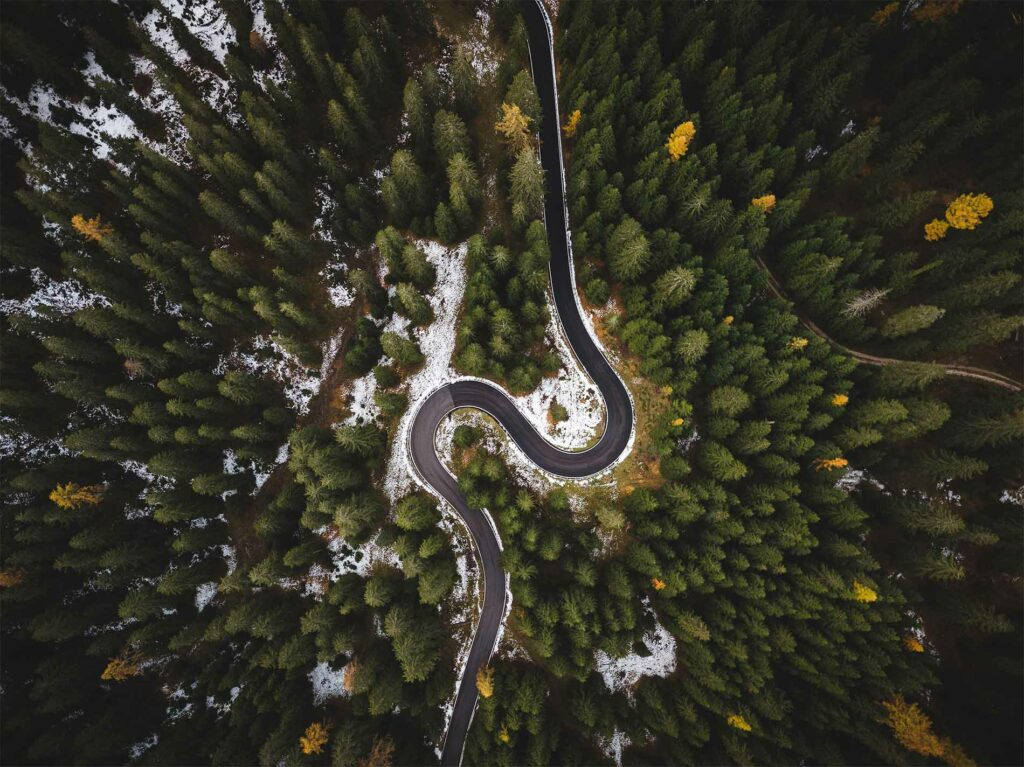 winding road in a forest